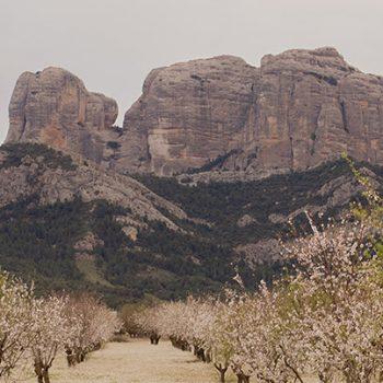 Rocas de Benet