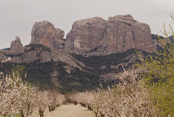 Roques de Benet