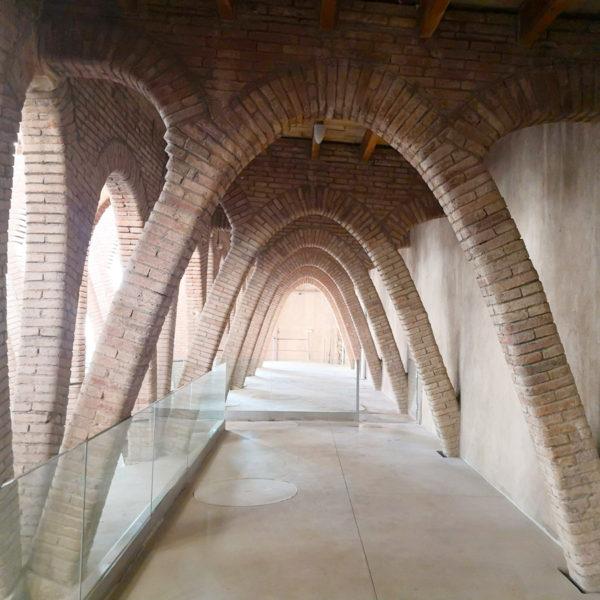 catedral-del-vi-pinell-de-brai-13-01